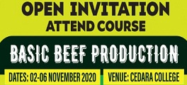 Basic Beef Production Course thumbnail