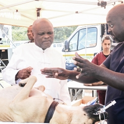 Animal Health Care Launch